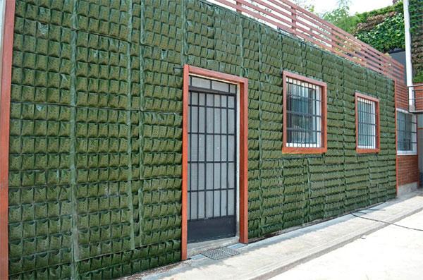 Jardines verticales y muros verdes vivero chaclacayo for Jardines verticales de interior